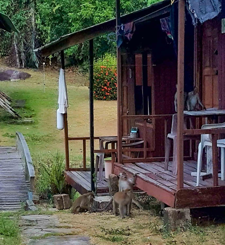 Tekek Village - Tioman Island, Malaysia 2