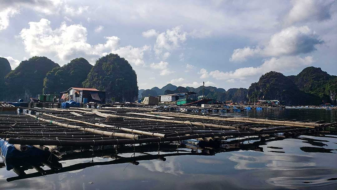 Floating Fish Farm in Halong Bay