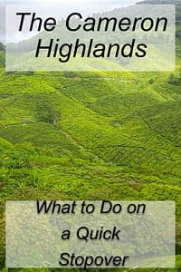 Cameron Highlands Malaysia Tea Fields