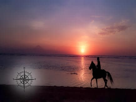 Horse on Beach at Sunset