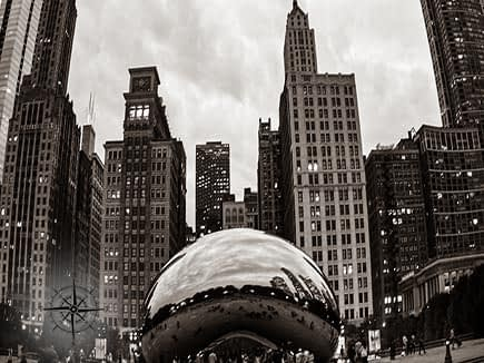 black and white photo of the Chicago Bean